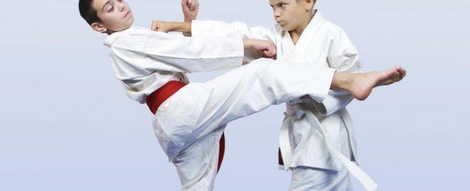 Arti marziali e cervello